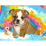 candy Bulldog Puppies ready now