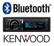Mobile car audio/hands free and multi media & Alarm Systems.